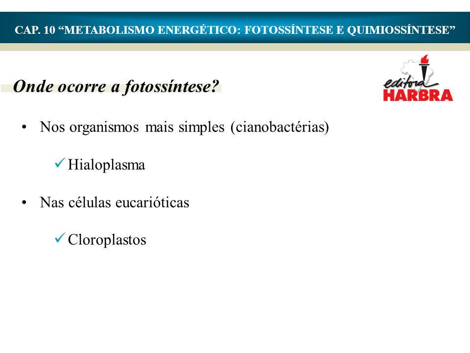 "Onde ocorre a fotossíntese? •Nos organismos mais simples (cianobactérias)  Hialoplasma •Nas células eucarióticas  Cloroplastos CAP. 10 ""METABOLISMO"