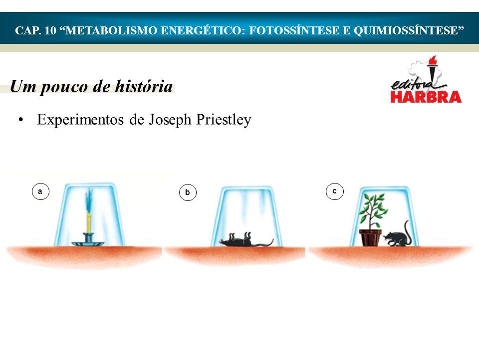 """Um pouco de história CAP. 10 """"METABOLISMO ENERGÉTICO: FOTOSSÍNTESE E QUIMIOSSÍNTESE"""" •Experimentos de Joseph Priestley a b c"""