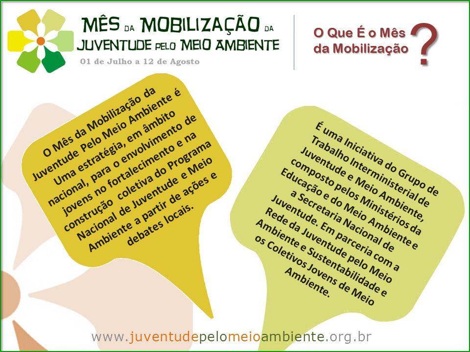 www.juventudepelomeioambiente.org.br O Que É o Mês da Mobilização É uma Iniciativa do Grupo de Trabalho Interministerial de Juventude e Meio Ambiente, composto pelos Ministérios da Educação e do Meio Ambiente e a Secretaria Nacional de Juventude.