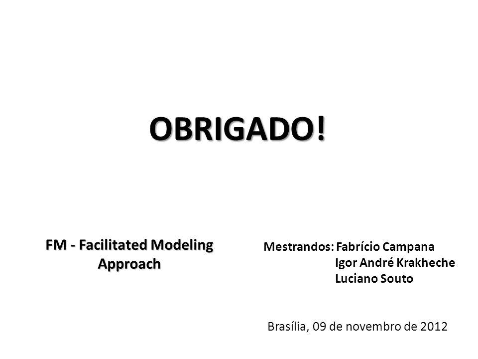 FM - Facilitated Modeling Approach Mestrandos: Fabrício Campana Igor André Krakheche Luciano Souto Brasília, 09 de novembro de 2012 OBRIGADO!
