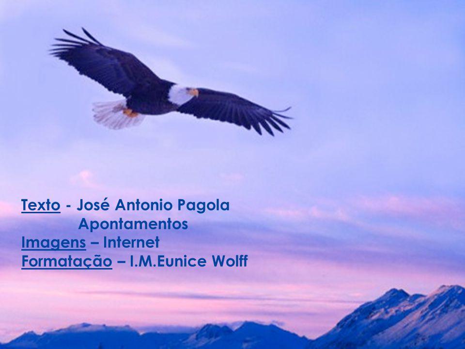 Texto - José Antonio Pagola Apontamentos Imagens – Internet Formatação – I.M.Eunice Wolff