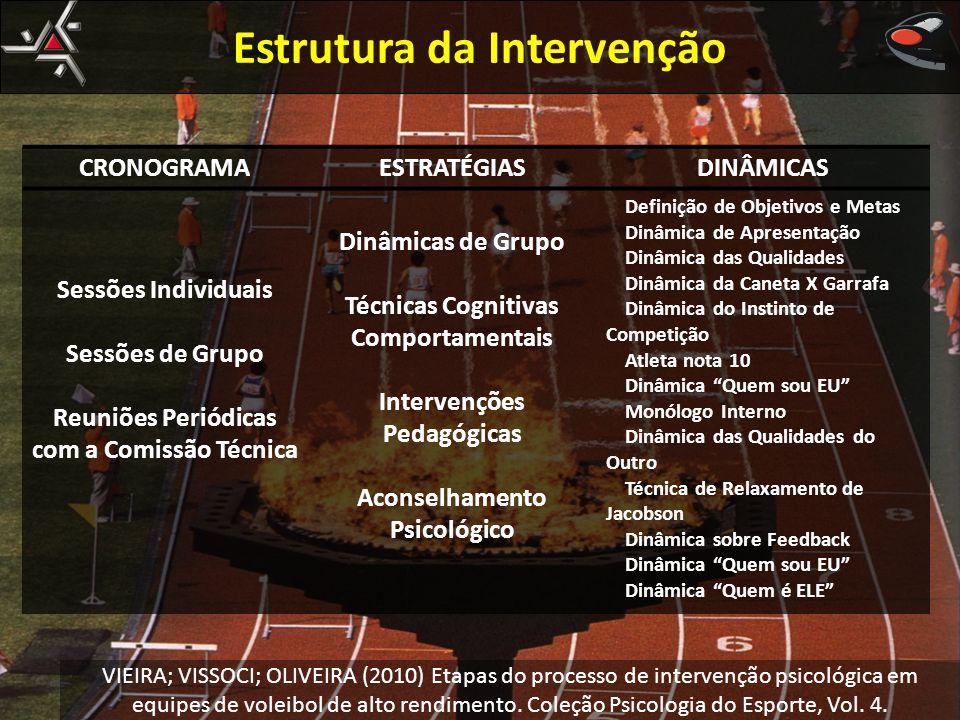 Estrutura da Intervenção CRONOGRAMAESTRATÉGIASDINÂMICAS Sessões Individuais Sessões de Grupo Reuniões Periódicas com a Comissão Técnica Dinâmicas de G