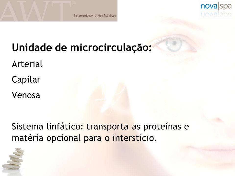 Unidade de microcirculação: Arterial Capilar Venosa Sistema linfático: transporta as proteínas e matéria opcional para o interstício.