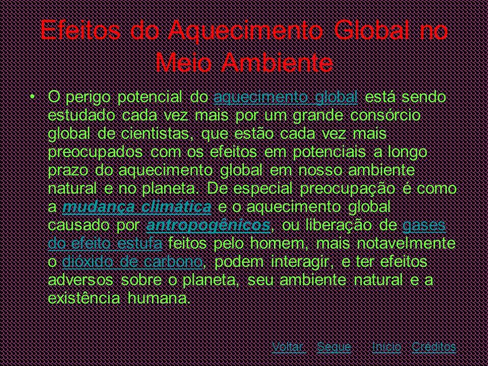 Efeitos do Aquecimento Global no Meio Ambiente •O perigo potencial do aquecimento global está sendo estudado cada vez mais por um grande consórcio glo