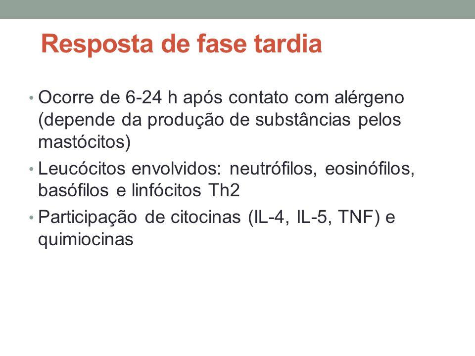• Ocorre de 6-24 h após contato com alérgeno (depende da produção de substâncias pelos mastócitos) • Leucócitos envolvidos: neutrófilos, eosinófilos,