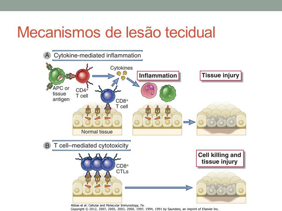 Mecanismos de lesão tecidual