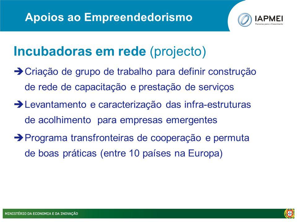 Incubadoras em rede (projecto)  Criação de grupo de trabalho para definir construção de rede de capacitação e prestação de serviços  Levantamento e