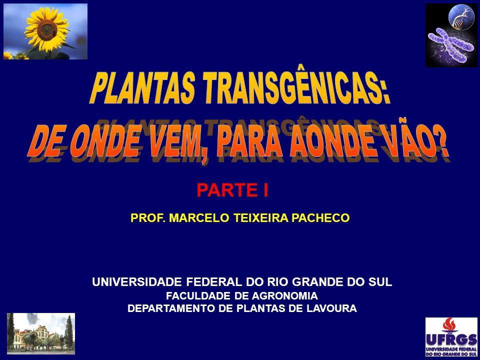 PROF. MARCELO TEIXEIRA PACHECO UNIVERSIDADE FEDERAL DO RIO GRANDE DO SUL FACULDADE DE AGRONOMIA DEPARTAMENTO DE PLANTAS DE LAVOURA PARTE I