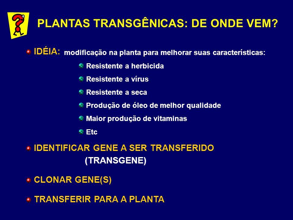 PLANTAS TRANSGÊNICAS: DE ONDE VEM? IDÉIA: IDENTIFICAR GENE A SER TRANSFERIDO (TRANSGENE) CLONAR GENE(S) TRANSFERIR PARA A PLANTA modificação na planta
