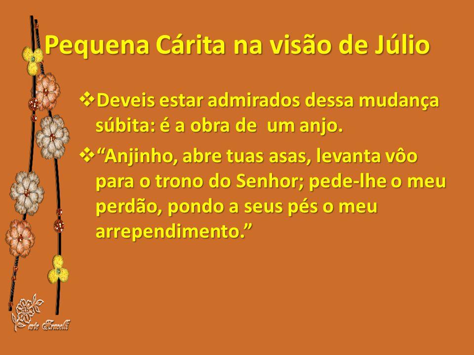 Pequena Cárita na visão de Júlio  Deveis estar admirados dessa mudança súbita: é a obra de um anjo.