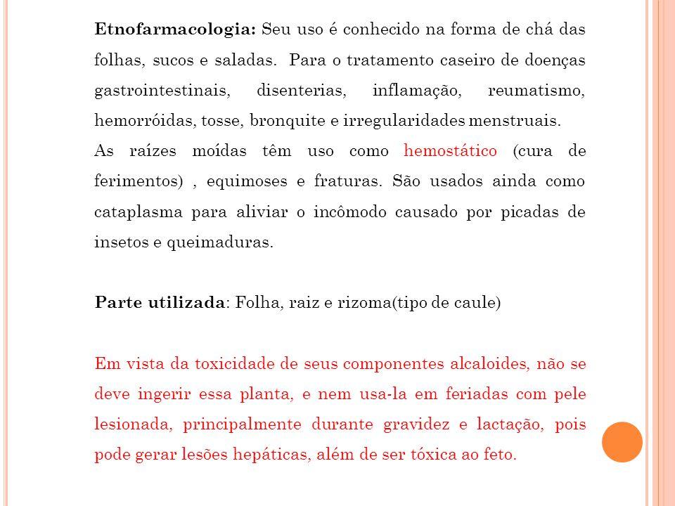 Etnofarmacologia: Seu uso é conhecido na forma de chá das folhas, sucos e saladas. Para o tratamento caseiro de doenças gastrointestinais, disenterias