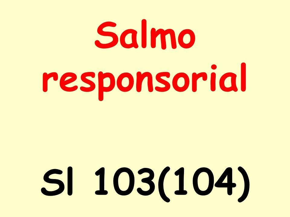 Salmo responsorial Sl 103(104)