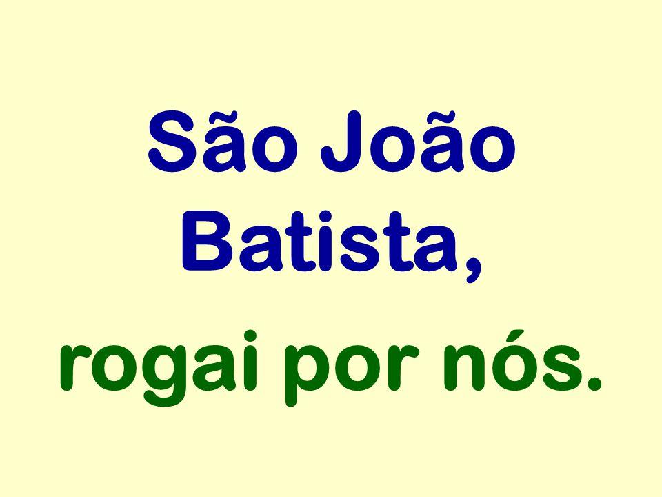 São João Batista, rogai por nós.