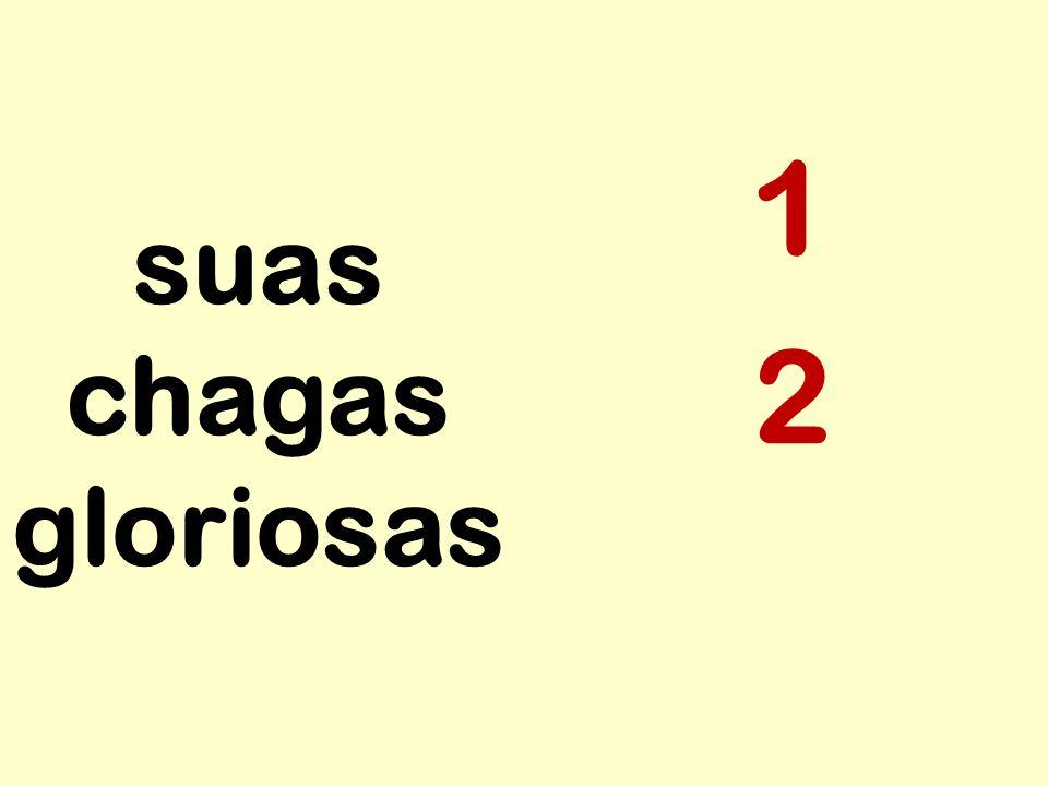 suas chagas gloriosas 1 4 2 5 3
