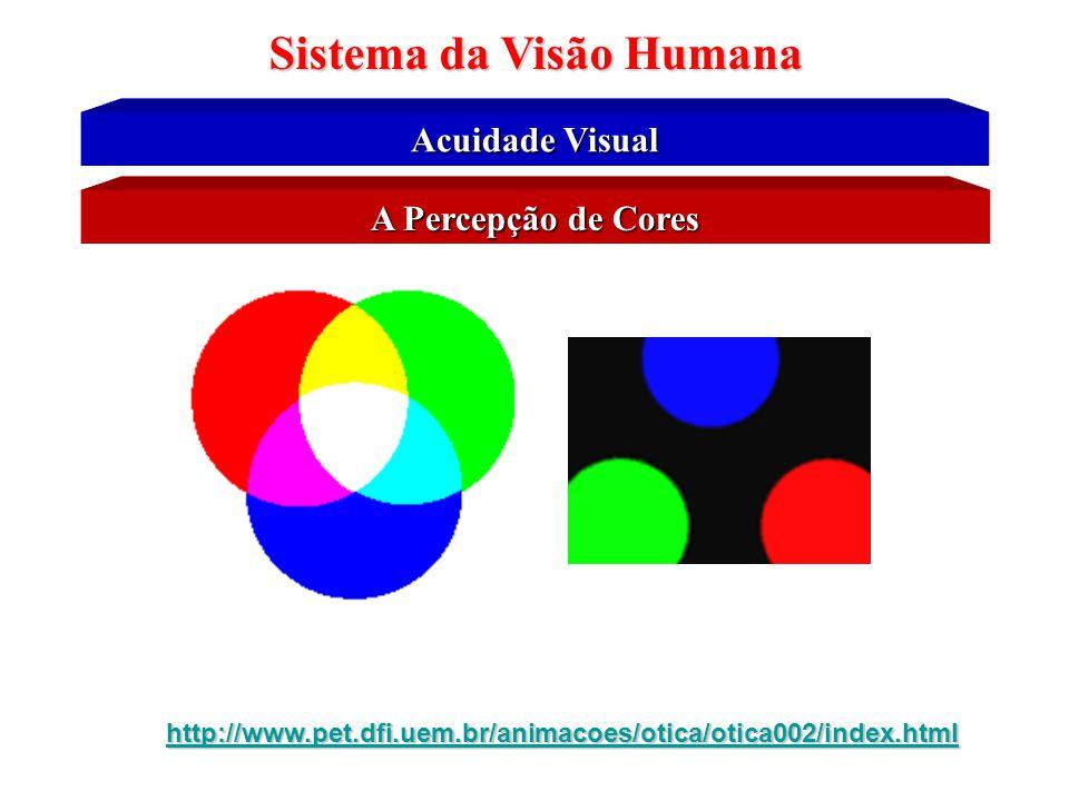 Sistema da Visão Humana Fotoquímica da Visão Humana Detecção de Cores pelo Cones •Os agentes fotoquímicos nos cones têm quase exatamente a mesma compo