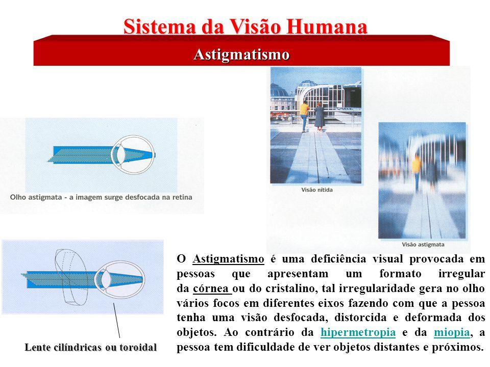 Características Físicas do Olho Humano Sistema da Visão Humana Na percepção visual humana, os diferentes comprimentos de onda (  ) estão associados a