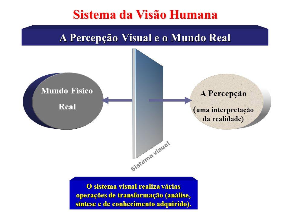 Daltonismo Acuidade Visual •As pessoas de visão cromáticas normal, não terão dificuldade em ver o número 74. •Já as pessoas cegas ao vermelho e ao ver