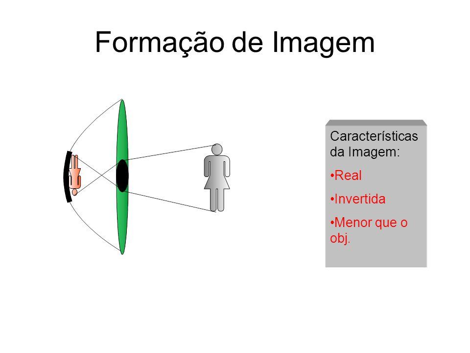 Características Físicas do Olho Humano Sistema da Visão Humana A Percepção de Objetos Luz Iluminação Reflexão Percepção objeto