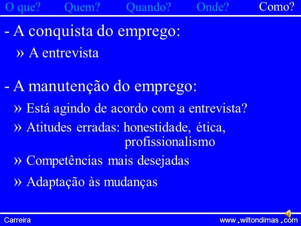 Carreira www wiltondimas com ● ● - Em qual empresa trabalhar: » Grande ou pequena.