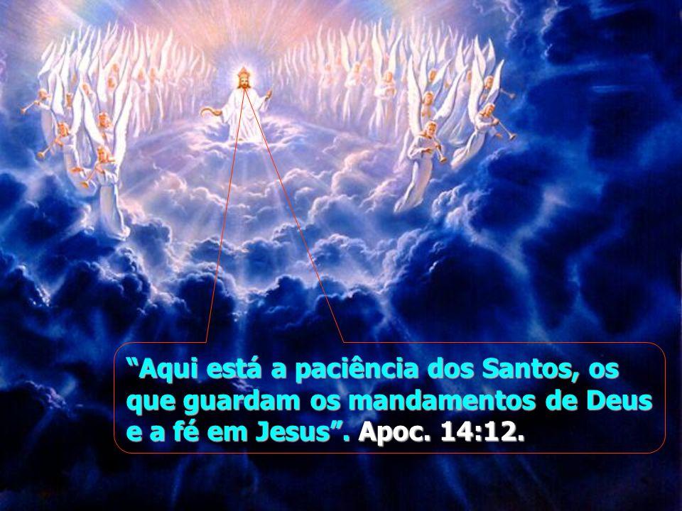 """""""Aqui está a paciência dos Santos, os que guardam os mandamentos de Deus e a fé em Jesus"""". Apoc. 14:12."""