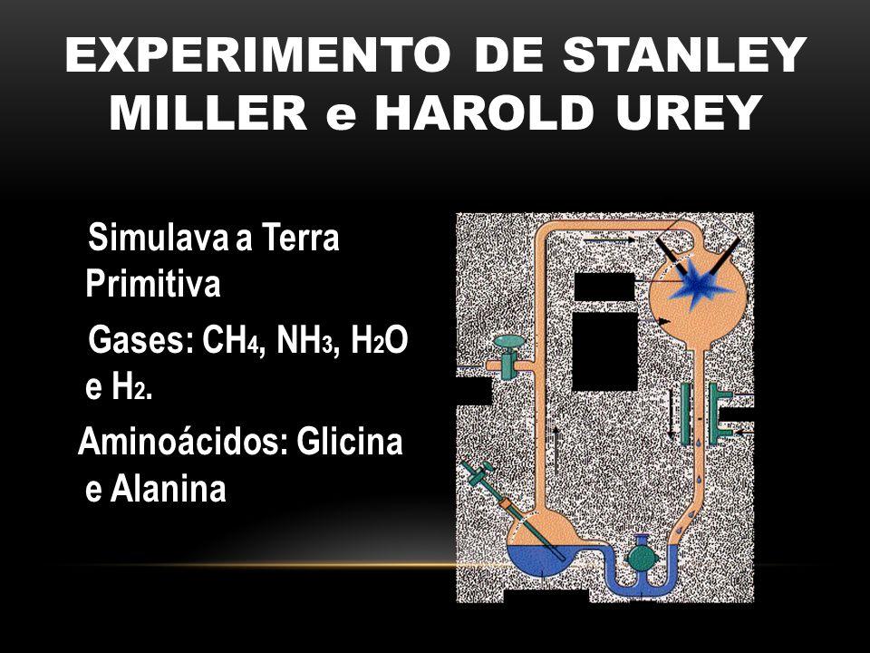 EXPERIMENTO DE STANLEY MILLER e HAROLD UREY Simulava a Terra Primitiva Gases: CH 4, NH 3, H 2 O e H 2. Aminoácidos: Glicina e Alanina