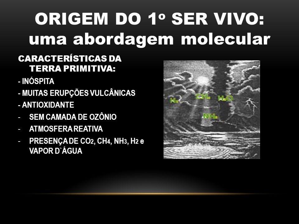 ORIGEM DO 1 o SER VIVO: uma abordagem molecular CARACTERÍSTICAS DA TERRA PRIMITIVA: - INÓSPITA - MUITAS ERUPÇÕES VULCÂNICAS - ANTIOXIDANTE - SEM CAMAD