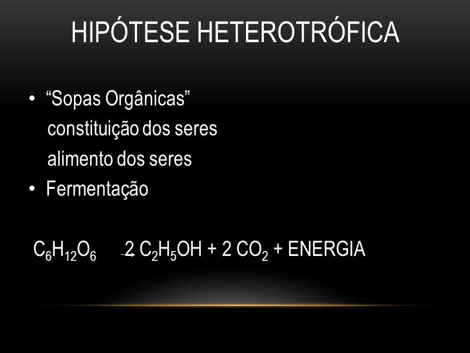 """HIPÓTESE HETEROTRÓFICA • """"Sopas Orgânicas"""" constituição dos seres alimento dos seres • Fermentação C 6 H 12 O 6 2 C 2 H 5 OH + 2 CO 2 + ENERGIA"""