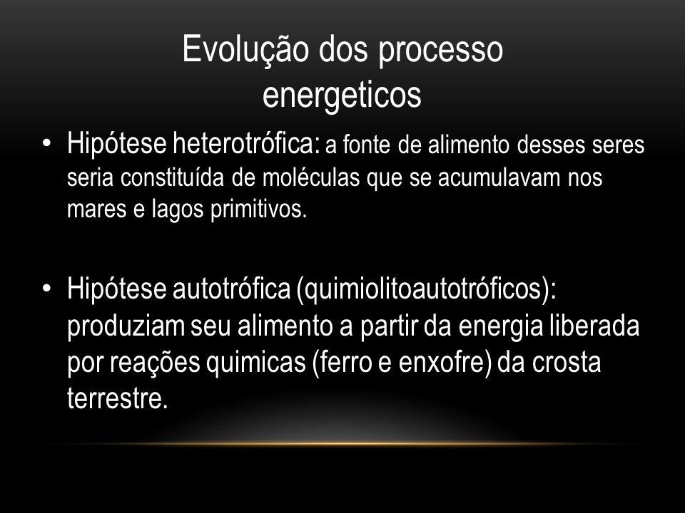 Evolução dos processo energeticos • Hipótese heterotrófica: a fonte de alimento desses seres seria constituída de moléculas que se acumulavam nos mare