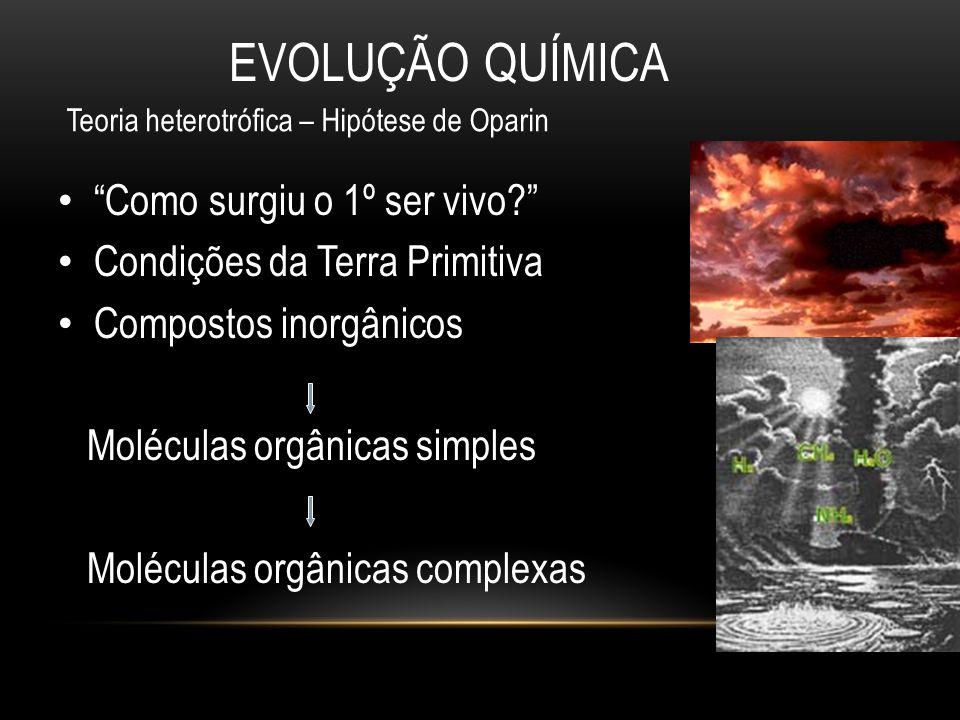 """EVOLUÇÃO QUÍMICA • """"Como surgiu o 1º ser vivo?"""" • Condições da Terra Primitiva • Compostos inorgânicos Moléculas orgânicas simples Moléculas orgânicas"""