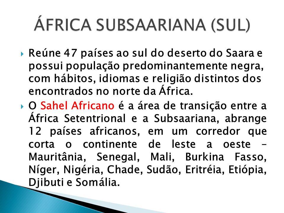  Reúne 47 países ao sul do deserto do Saara e possui população predominantemente negra, com hábitos, idiomas e religião distintos dos encontrados no