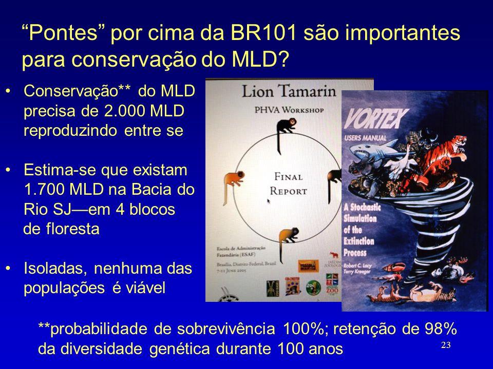 """""""Pontes"""" por cima da BR101 são importantes para conservação do MLD? •Conservação** do MLD precisa de 2.000 MLD reproduzindo entre se •Estima-se que ex"""
