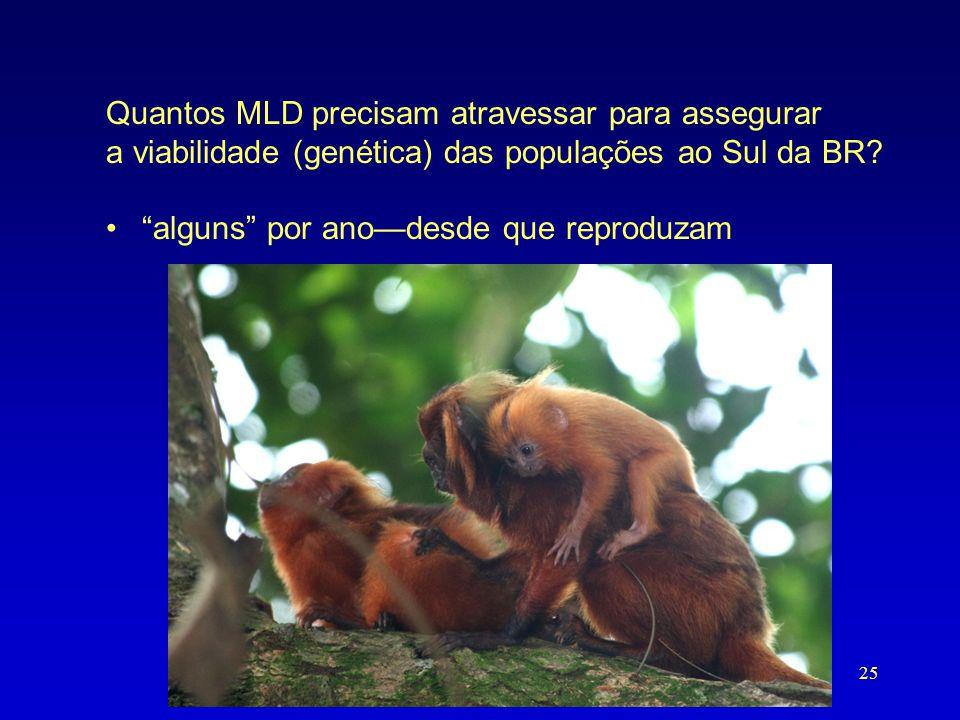 """Quantos MLD precisam atravessar para assegurar a viabilidade (genética) das populações ao Sul da BR? •""""alguns"""" por ano—desde que reproduzam 25"""