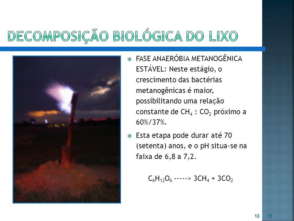  FASE ANAERÓBIA METANOGÊNICA ESTÁVEL: Neste estágio, o crescimento das bactérias metanogênicas é maior, possibilitando uma relação constante de CH 4
