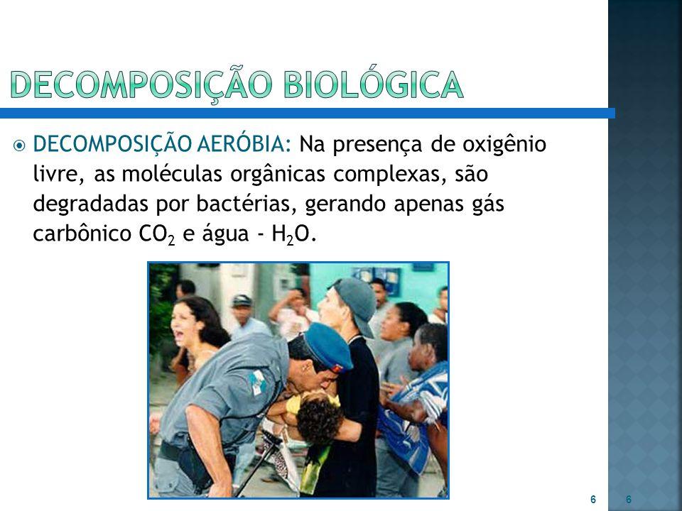  DECOMPOSIÇÃO ANAERÓBIA: Na ausência de oxigênio livre, a matéria orgânica, é degradada por bactérias, produzindo além de CO 2 e H 2 O, compostos orgânicos, ainda complexos, como por exemplo ácidos orgânicos mais simples, álcoois, cetonas,  etc.
