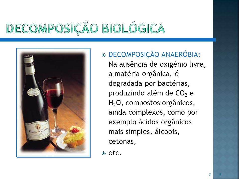  DECOMPOSIÇÃO ANAERÓBIA: Na ausência de oxigênio livre, a matéria orgânica, é degradada por bactérias, produzindo além de CO 2 e H 2 O, compostos org