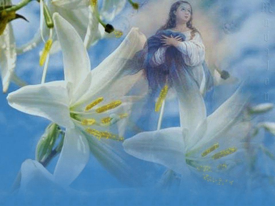 Segundo o testemunho de Lucas, a maternidade de Maria implicou um ato livre de fé, mais decisivo para a história pública da salvação do que a fé de Abraão ou a Aliança do Sinai.
