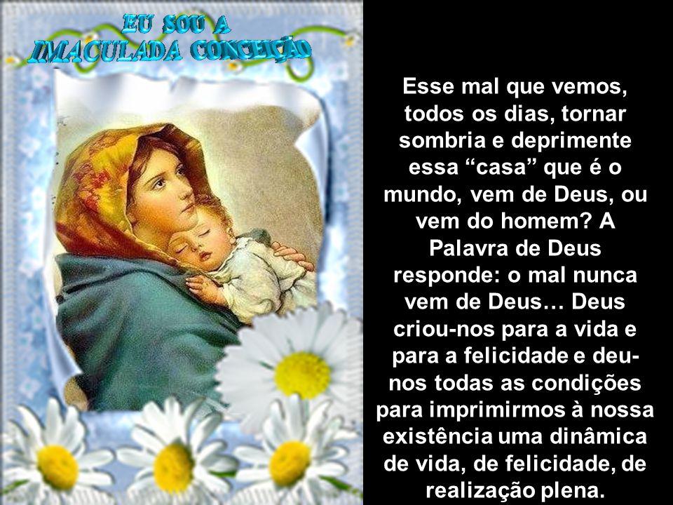 TEXTOS EXTRAÍDOS DO PORTAL DEHONIANOS: SACERDOTES DO SAGRADO CORAÇÃO DE JESUS