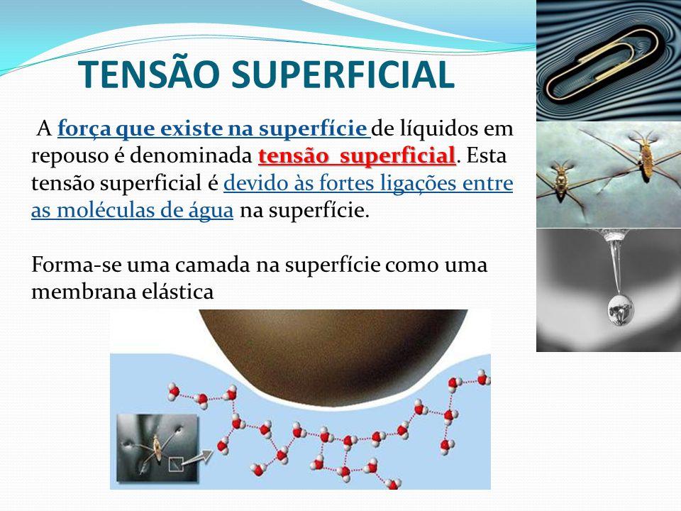 SOLUBILIDADE Solvente • Solvente: Substância que dissolve outra substância (soluto).