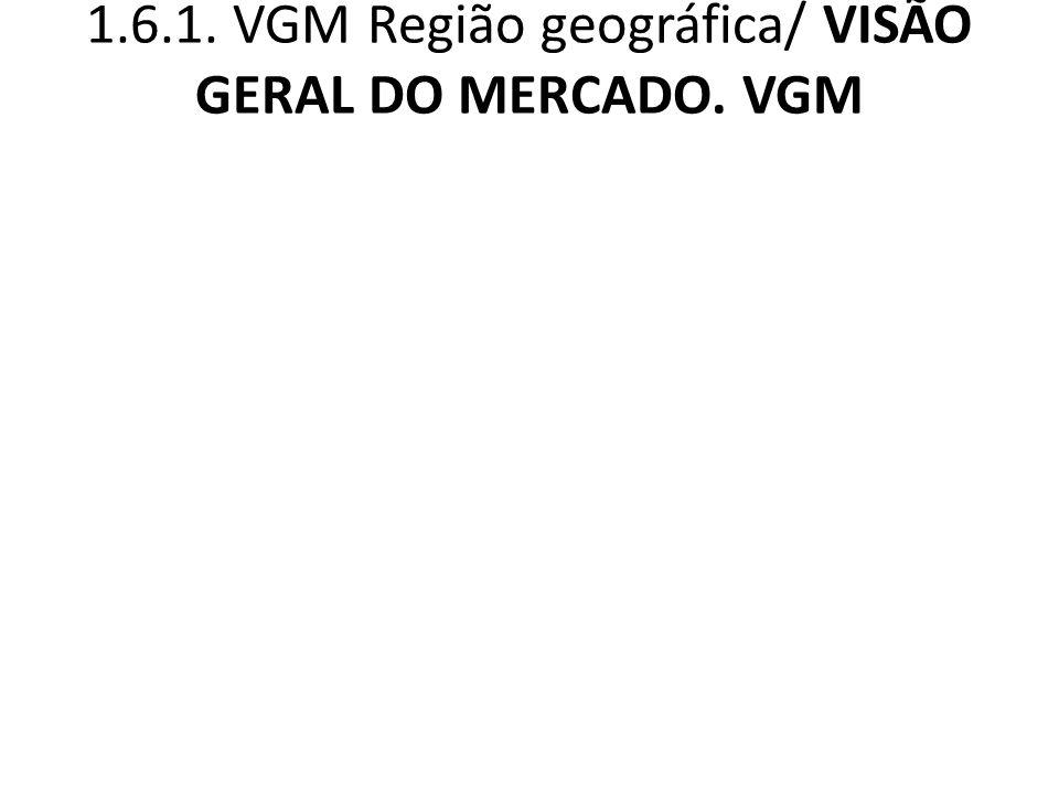 1.6.1. VGM Região geográfica/ VISÃO GERAL DO MERCADO. VGM