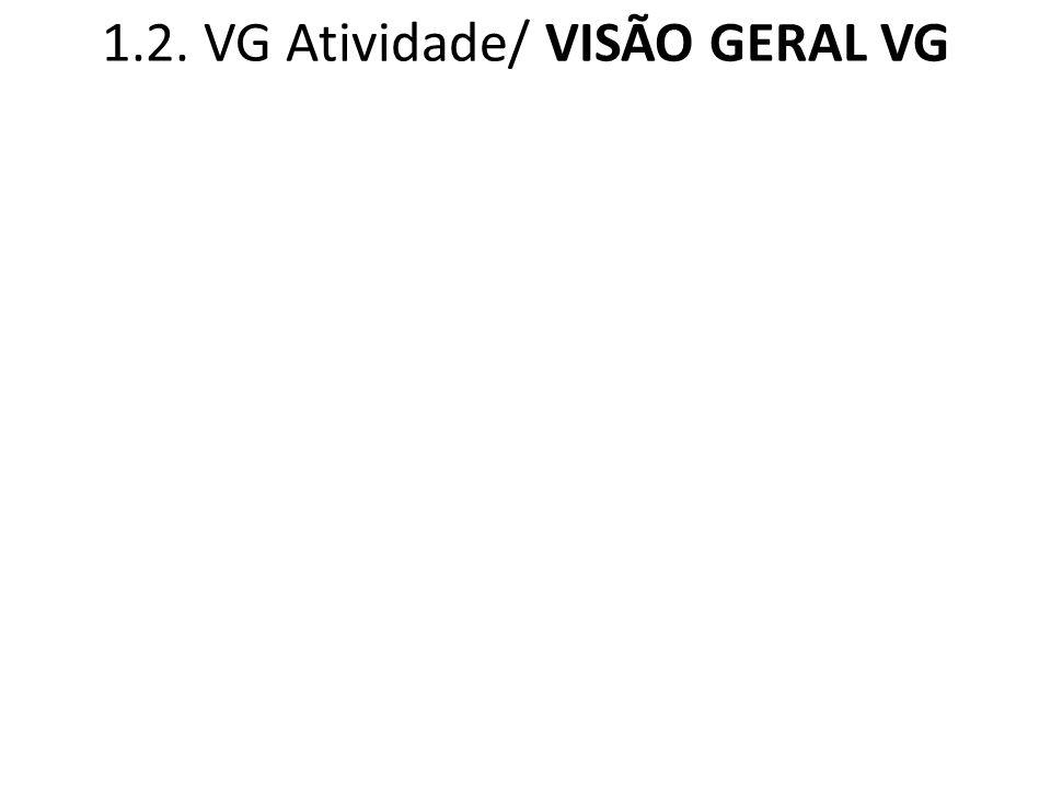 1.2. VG Atividade/ VISÃO GERAL VG