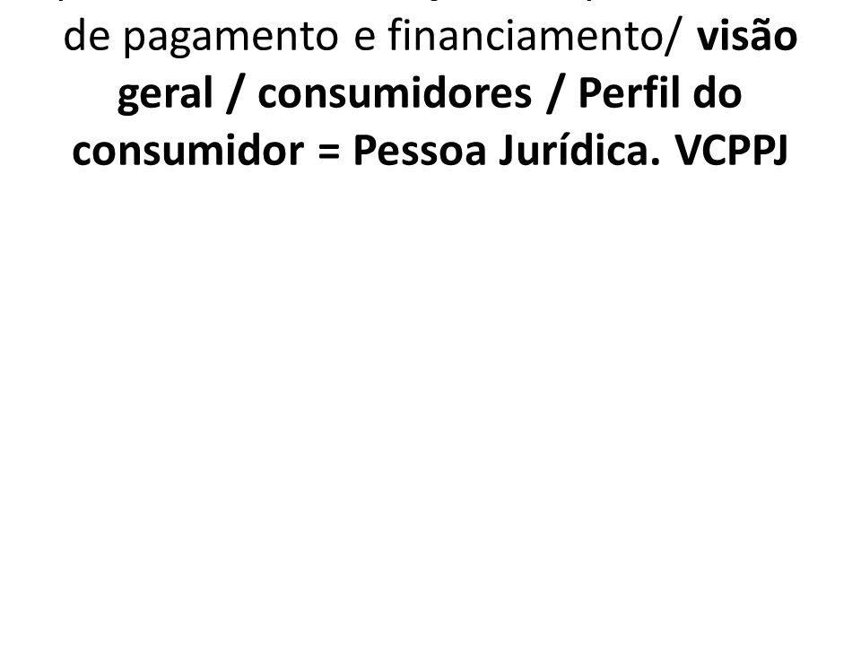 1.7.4.6. VCPPJ Importância atribuída a suporte técnico, serviços de apoio e formas de pagamento e financiamento/ visão geral / consumidores / Perfil d
