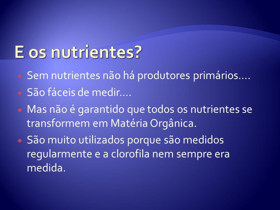  Sem nutrientes não há produtores primários….  São fáceis de medir….