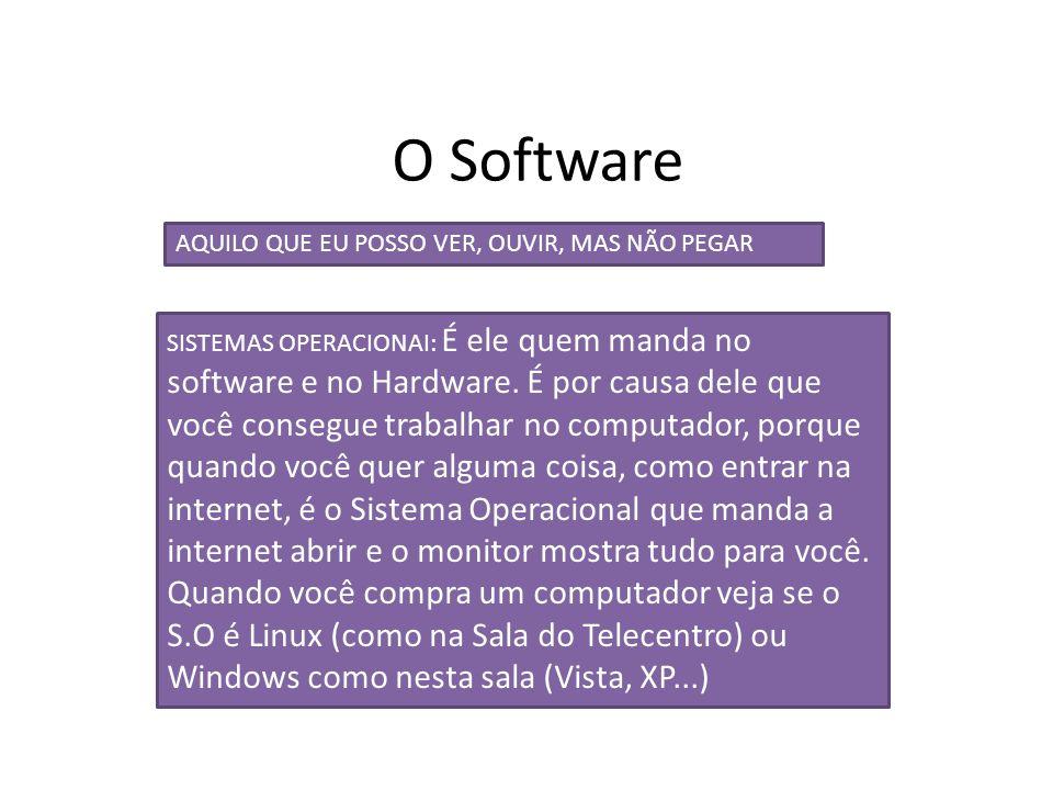 O Software AQUILO QUE EU POSSO VER, OUVIR, MAS NÃO PEGAR SISTEMAS OPERACIONAI: É ele quem manda no software e no Hardware. É por causa dele que você c