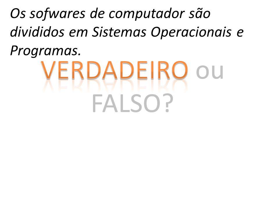 VERDADEIRO ou FALSO? Os sofwares de computador são divididos em Sistemas Operacionais e Programas.