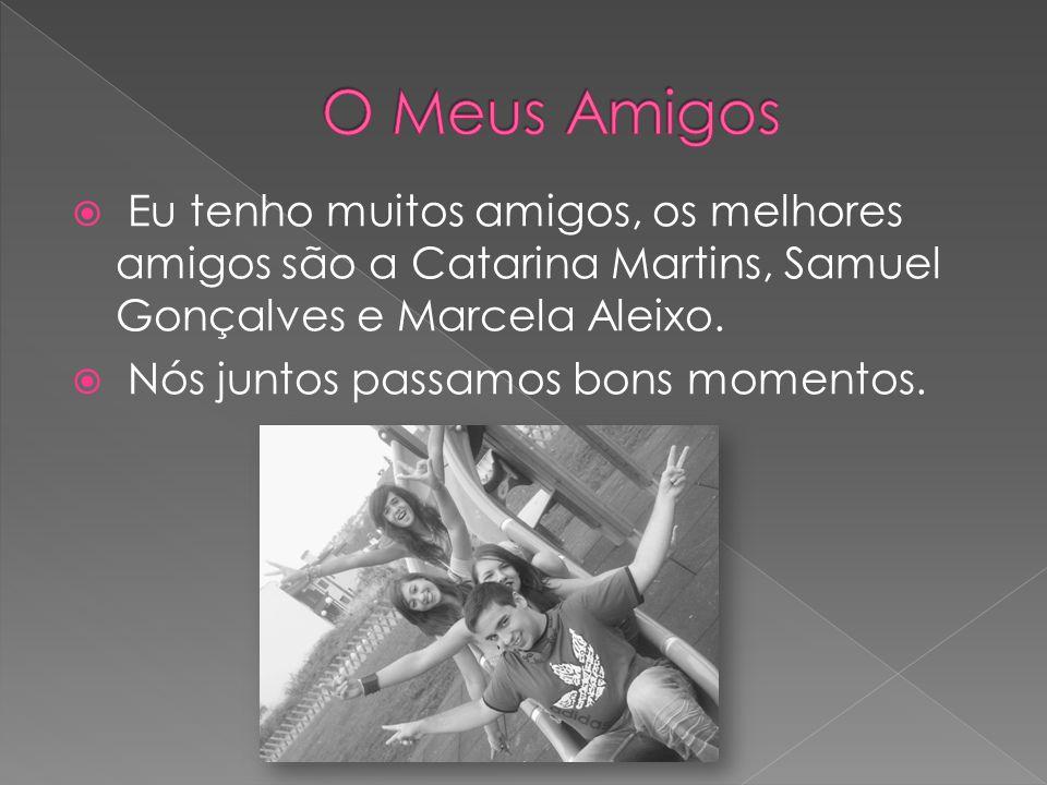 A Catarina Martins é a pessoa que me apoia em tudo nos bons e nos maus momentos, ela é inesquecível !