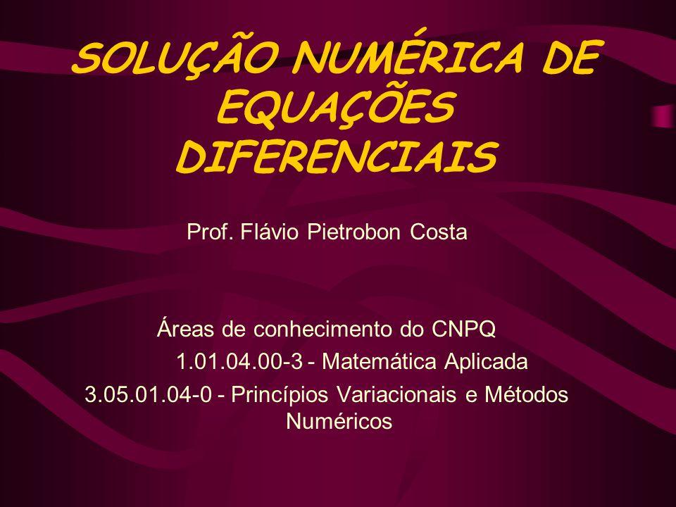 SOLUÇÃO NUMÉRICA DE EQUAÇÕES DIFERENCIAIS Prof. Flávio Pietrobon Costa Áreas de conhecimento do CNPQ 1.01.04.00-3 - Matemática Aplicada 3.05.01.04-0 -