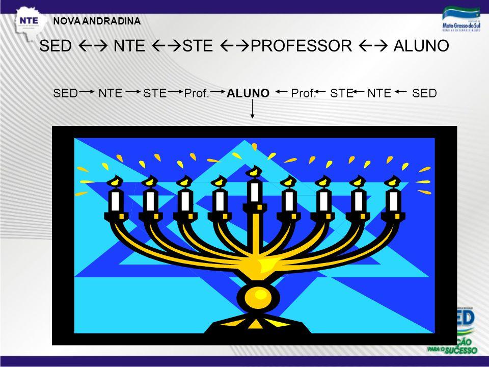 SED  NTE  STE  PROFESSOR  ALUNO SED NTE STE Prof. ALUNO Prof. STE NTE SED NOVA ANDRADINA