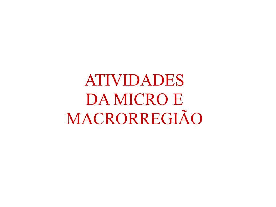 ATIVIDADES DA MICRO E MACRORREGIÃO