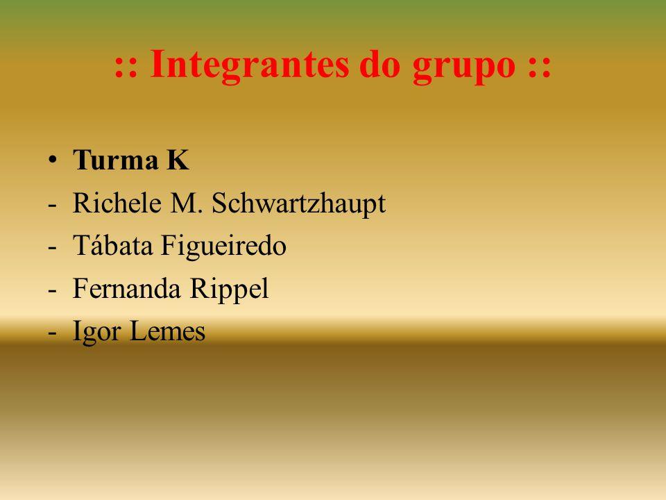 :: Integrantes do grupo :: • Turma K -Richele M. Schwartzhaupt -Tábata Figueiredo -Fernanda Rippel -Igor Lemes