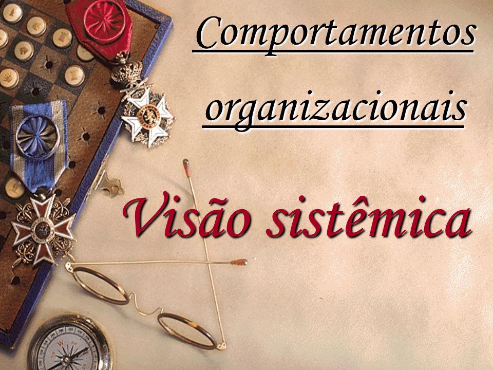 Visão sistêmica Comportamentos organizacionais